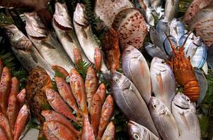 Ешьте рыбу на море: о пользе морской рыбы