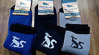 """Шкарпетки жіночі махрові,Житомир""""Premium Котики"""", фото 1"""