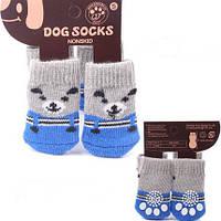 Носки для собак М серо-синие с мишкой