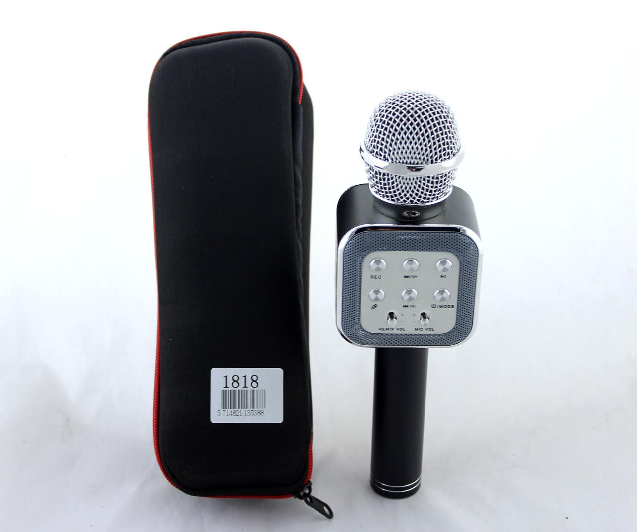 Микрофон с функцией караоке Wster WS1818 + чехол