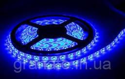Светодиодная лента 5 м Led 60L IP20, цвет: синий