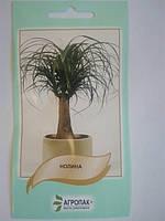 Семена Нолина (бокарнея)  5 семян Агропак