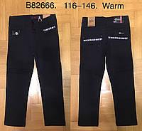 Котоновые брюки на флисе для мальчиков оптом, 116-146 рр., фото 1