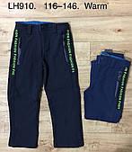 Лыжные штаны утепленные для мальчиков F&D оптом , 116-146 pp.