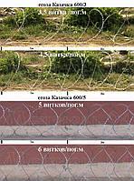 Егоза Казачка 600/3 с повышенной защитой от коррозии (14-24,5 м)