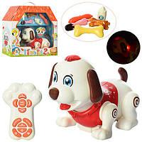 Собака-робот музыкальный 11031