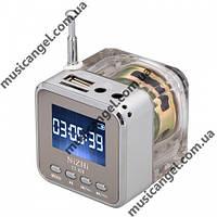 Портативная колонка Nizhi TT-029 - MicroSD, USB, FM, дисплей, эквалайзер, фото 1