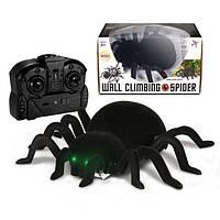 Игрушка паук на радиоуправлении Robo wall climbing, может ползать по стенам, игрушки на Р/У, детские игрушки, фото 1