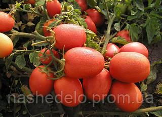 Семена томата Семалус F1 1000 семян Semo