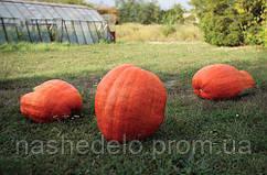 Семена тыквы Голиаш 100 гр. Semo