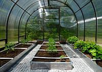 Грядки в теплице – секреты опытных огородников