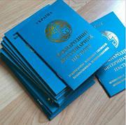 Паспорт ветеринарный международный