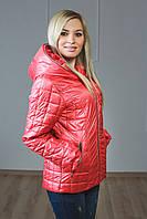 Курточка женская весна-осень Гуччи, фото 1