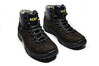 Киев. Мужские зимние ботинки на меху в стиле ECCO, коричневый с черным. Код  товара  094f3cfb435