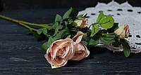Ветка роз пыльно- светло-розового цвета премиум, фото 1