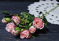 Ветка роз розового цвета премиум