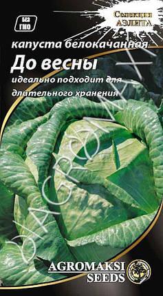 Насіння капусти білокачанної До весни 1г АГРОМАКСИ, фото 2