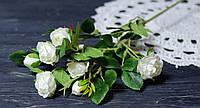 Ветка роз белого цвета кустовая премиум