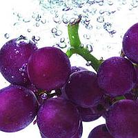 Фиолетовый натуральный пищевой краситель