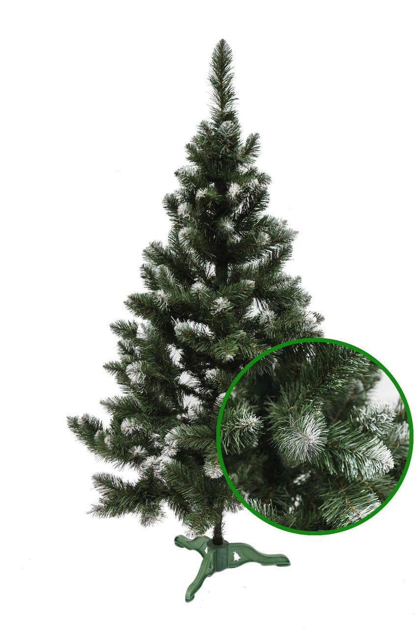 Искусственная  елка Королева з белыми кончиками 2м