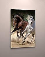 Декор на стену картина печать на холсте Две лошади Кони Красивая лошадь 60х40