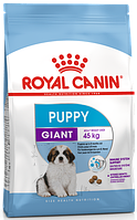 Royal Canin Giant Puppy сухой корм для щенков от 2-8 месяцев 15КГ
