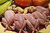 Тушки молодых перепелов весом 150-250 грамм.