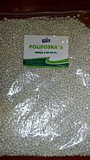 Комплексне добриво Поліфоска, Polifiska  6 NPK (S) 6-20-30- (7), фото 2