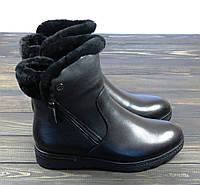 Зимние кожаные ботинки Anna Lucci, фото 1