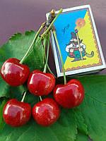 Саженцы черешни Подарок Юбиляру (Украина)