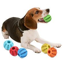 Іграшки та тренувальні снаряди для собак