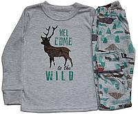 Пижама хлопковая для мальчиков, рост 110 см, серая, с оленем, Фламинго