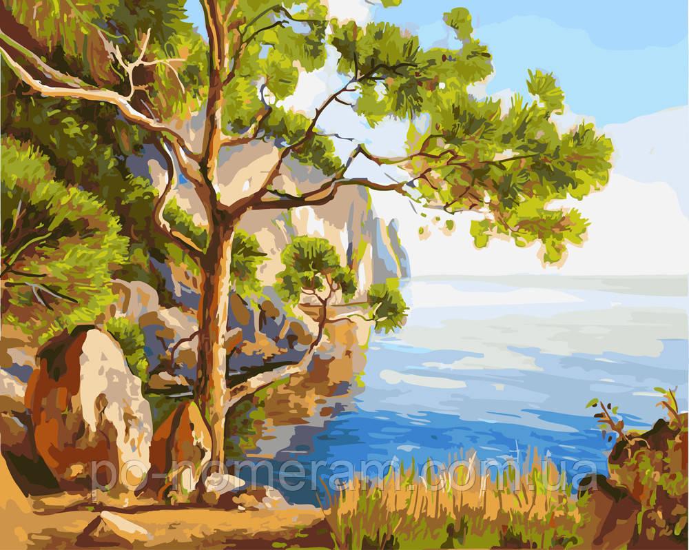 Раскраска по цифрам Дерево на морском берегу (BRM23719) 40 ...
