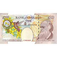 Деньги сувенирные 10 фунтов стерлингов . Пачка подарочных англйских фунтов 80 шт.