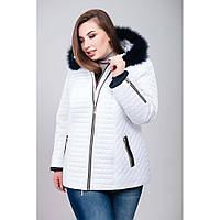 Женская зимняя куртка «Люда» из материала Memory City с 50 по 62 р.