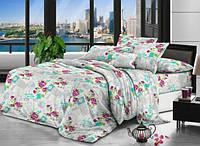 Комплект постельного белья,двухспальное (жатка,Тирасполь)