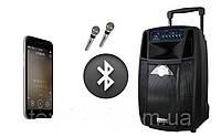 Акустика портативная Temeisheng  SL12-01 смикрофонами и Bluetooth