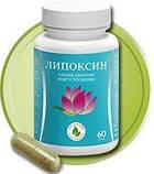Липоксин средство для борьбы с лишними килограммами, фото 2