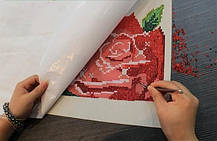 Алмазная вышивка (мозаика)