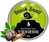 Омолаживающий крем с экстрактом слизи черной улитки Блек Снаил (Black Snail), фото 7