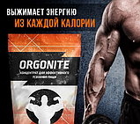 Оргонайт (Orgonite) концентрат для ускорения метаболизма, фото 5