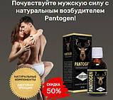 Пантоген (Pantogen) - природный усилитель потенции, фото 3