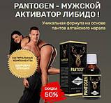 Пантоген (Pantogen) средство для потенции, фото 4