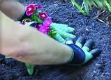 Садовая перчатка Garden Genie Gloves + Шланг X-Hose, фото 6