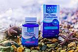 Система очищения Доктор море для похудения, фото 2