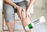 Специн препарат для суставов, фото 4