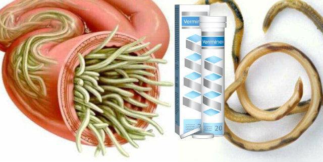 Таблетки от глистов и других паразитов Verminex (Верминекс)