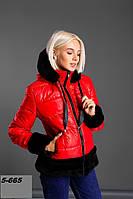 Куртка женская зима 5-665 Ан Код:804612629