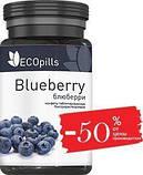 Фитотаблетки для зрения Ecopills Blueberry (Экопиллс Блюберри), фото 3