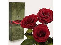 Три долгосвежих розы Багровый Гранат в подарочной упаковке 228-1841232